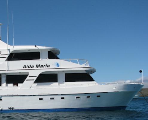 Aida Maria 9
