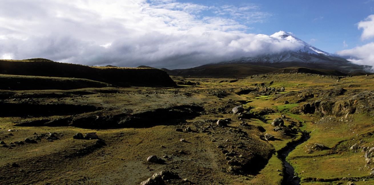 The Andean Condor's Trek & Cotopaxi