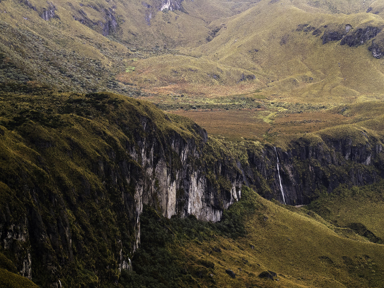 Colombia: It's Hiking Country   Colombia Country Brand  Los Nevados National Park