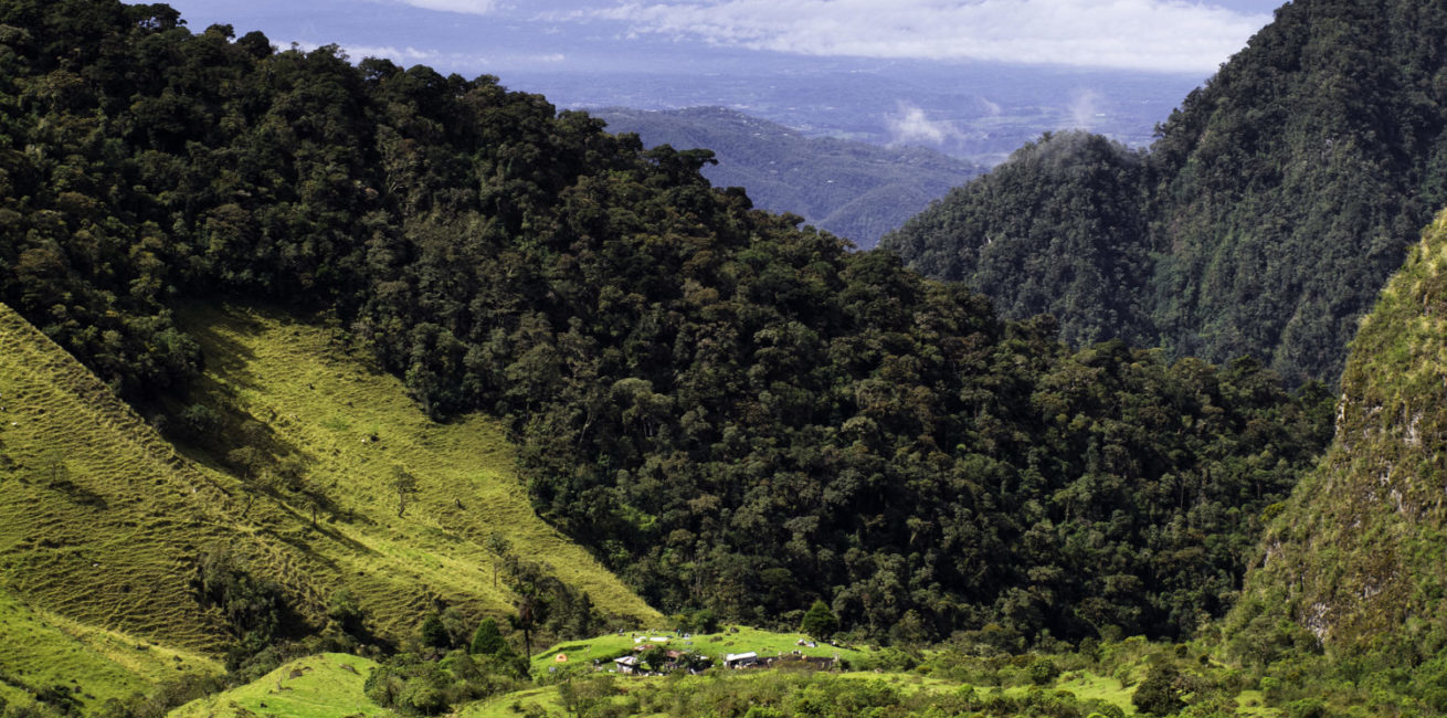Los Nevados: Classic trail