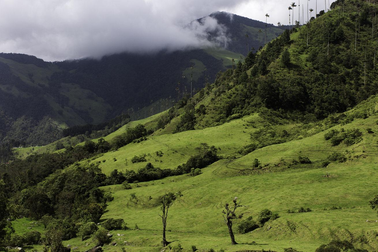 Los Nevados: A Guide to Parque Nacional Natural Los Nevados  Los Nevados National Park