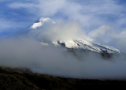 Cotopaxi (Add-on)