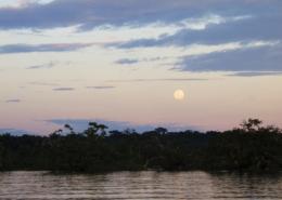Cuyabeno Reserve (+)