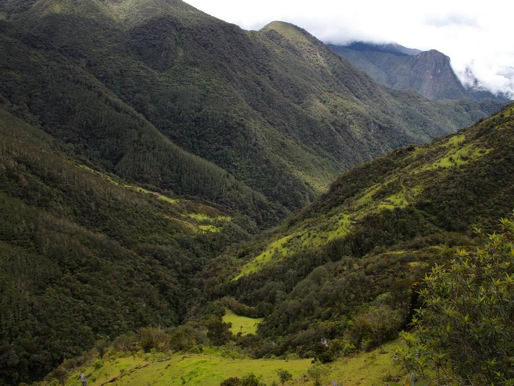 My trip to Tolima 5