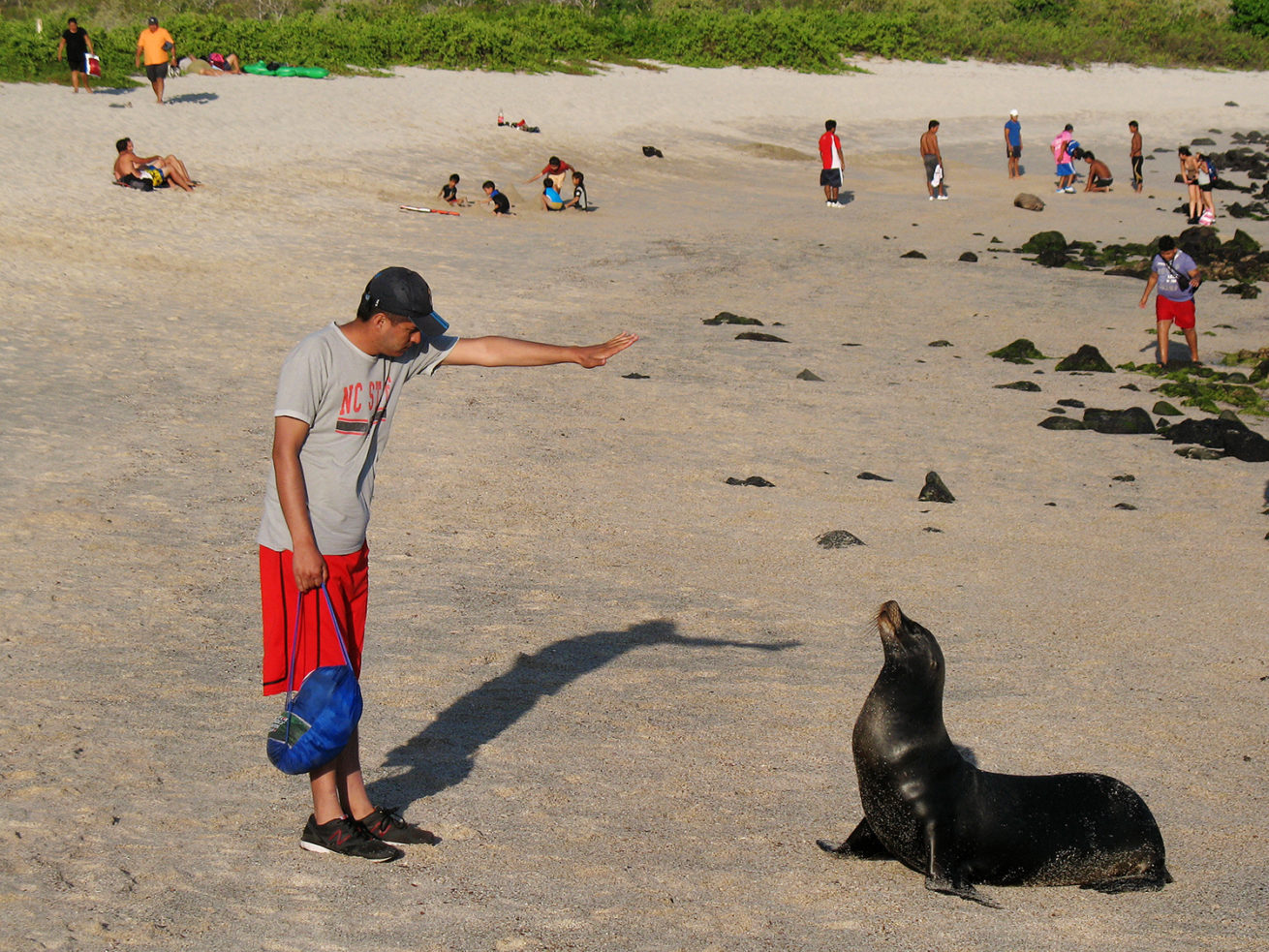 Evolution in Action – Galapagos Island Tours 9