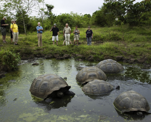 Evolution in Action – Galapagos Island Tours 6