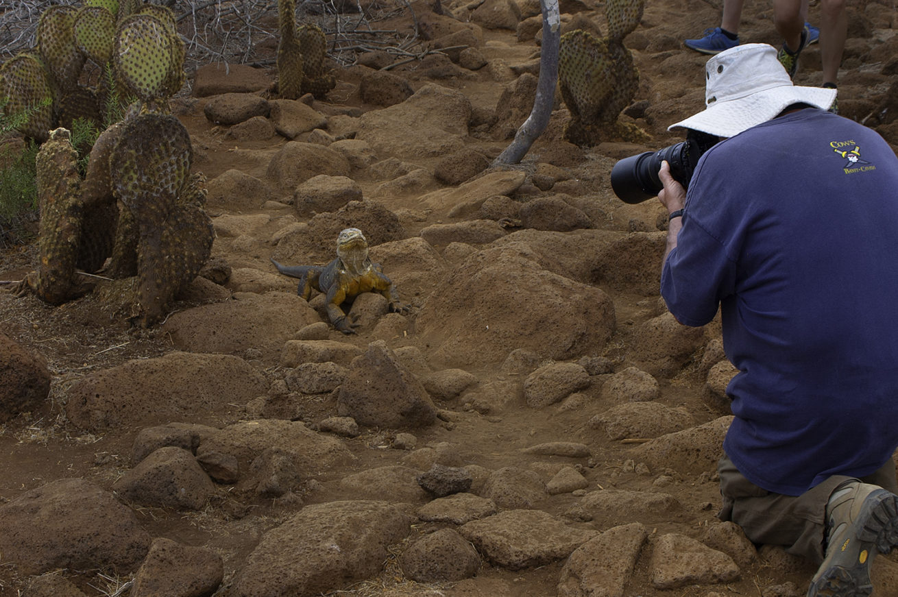 Evolution in Action – Galapagos Island Tours 7